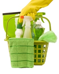 green cleaning experts